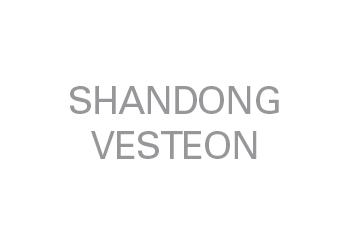 shandongvesteon